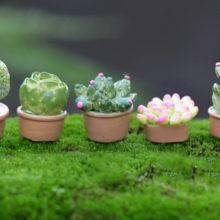 5Pcs Bonsai Mini Artificial Fleshy Cactus Plant Real Touch Palm garden decoration